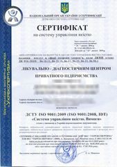 ISO 9001 VES small